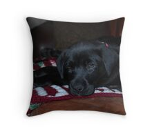 Our New Puppy Throw Pillow