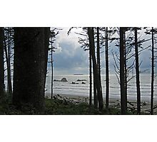 Gazing Upon the Pacific Ocean Photographic Print
