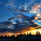 Storm's Trail (Northwestern Sunset) by rocamiadesign
