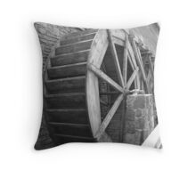 Dried Up? Throw Pillow