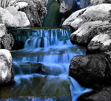 Sunken Gardens Waterfall  by Christopher Hanke