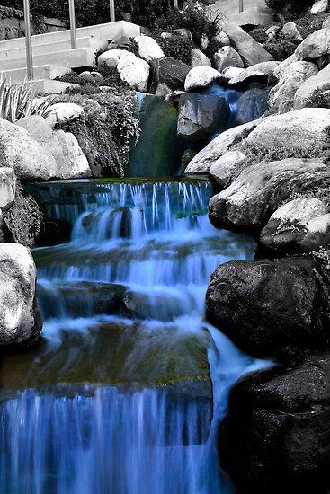 Sunken Gardens Waterfall  by Christopher Hanke