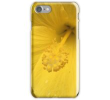 Atlanta, GA.  -- Spring Blooms I If you like, please purchase, try a cell phone cover thanks iPhone Case/Skin