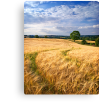 Summer's Bounty, The Cotswolds, England Canvas Print