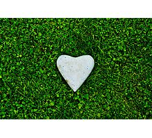 Green love Photographic Print