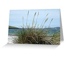 Atlantic Outlook - Seilebost Beach, Western Isles, Scotland Greeting Card