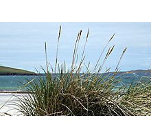 Atlantic Outlook - Seilebost Beach, Western Isles, Scotland Photographic Print