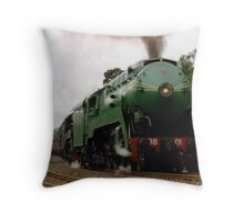 The 3801 Throw Pillow