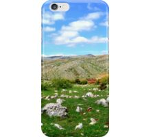 Donkey in the Valley iPhone Case/Skin