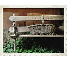 Bench of Memories - Wynstay - Mt Wilson NSW Australia Photographic Print