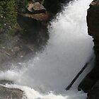 Alberta Falls by Dean Mucha