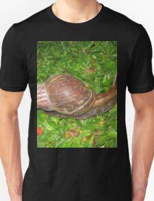 Cool Giant African Land Snail T-Shirt