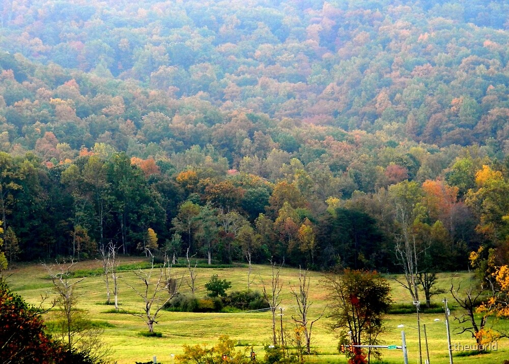 Virginia Landscape     ^ by ctheworld
