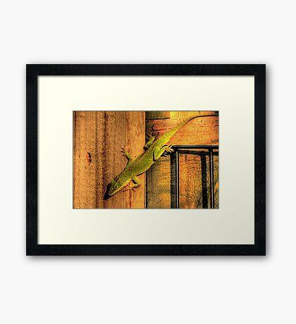 My Chameleon Friend Framed Print