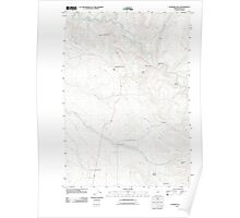 USGS Topo Map Oregon Flowers Gulch 20110822 TM Poster