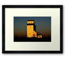 Golden Meadows Framed Print
