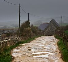 Road to St Alban's Head by Uwe Rothuysen