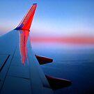 Southwest Sunset by Duane Salstrand