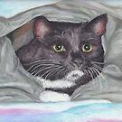 Cat in a Bag by Pam Humbargar