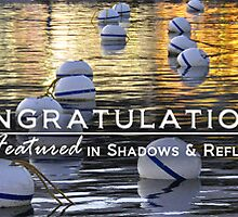 Shadows & Reflections Feature Banner 1 by Susana Weber