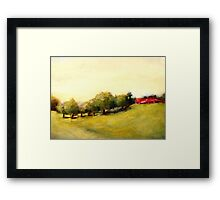 Costa Rica Meadow Framed Print
