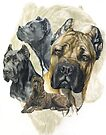 Cane Corso with Ghost Image by BarbBarcikKeith