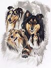 Collie with Ghost Image by BarbBarcikKeith