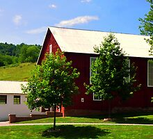 Trees on the Barn by Chuck Chisler