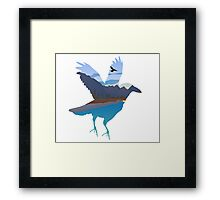 Raven in the valley Framed Print