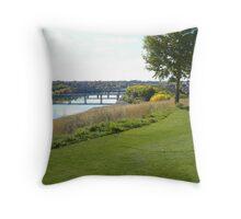 Landscape, Medicine Hat, Alberta Throw Pillow