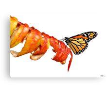 Autumn Monarch 2 Canvas Print