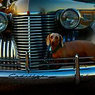 Ride With Style by Stormy Brannan
