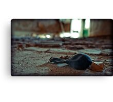 the party is over Canvas Print