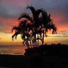 Port Charlotte Harbor Punta Gorda Florida by enyaw