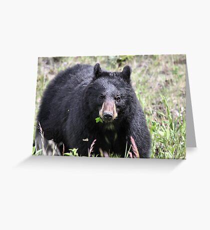 Salad Baaar (American Black Bear) Greeting Card
