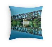 placid American River Throw Pillow
