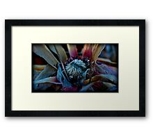 centered and of clear mind Framed Print