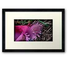 as the grass grew the color wept Framed Print