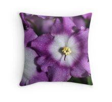 Mauve & White Bi-colour African Violets  Throw Pillow