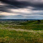Dusky skies on the grassy plains by James Cole