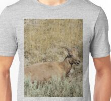 Big Horn Sheep Unisex T-Shirt
