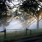 ~ Misty Gate ~ by LeeoPhotography