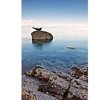 Corrie Seal Photographic Print