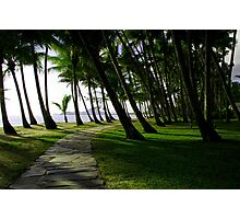 Palm Cove Nth Qld Australia Photographic Print