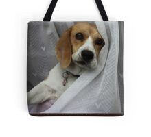 Hey guys . . what about me . .  Tote Bag