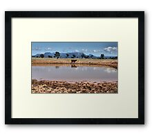 Capertee Billabong - NSW Australia Framed Print