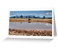 Capertee Billabong - NSW Australia Greeting Card