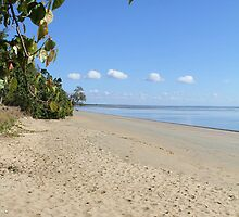 Desolate Beach Hervey Bay by Paul  Donaldson