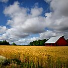 Ready For Harvest by Charles &amp; Patricia   Harkins ~ Picture Oregon
