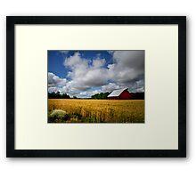 Ready For Harvest Framed Print